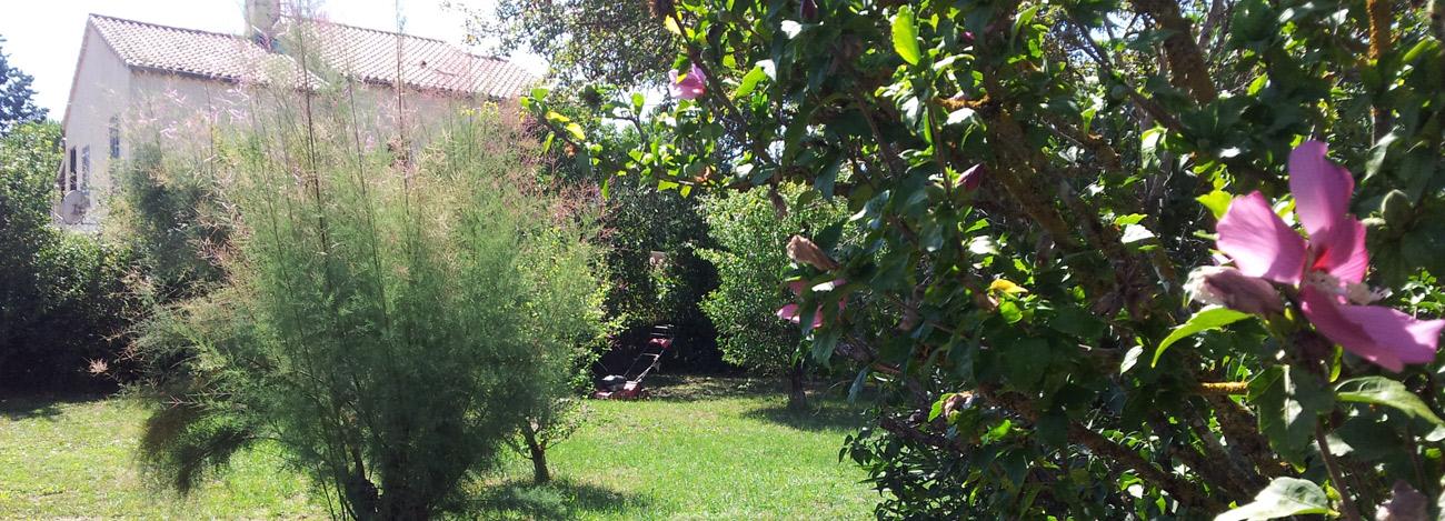 Partie sud du jardin